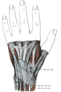 Repetitive motions, like texting, can cause an irritation of the tendons of the thumb.