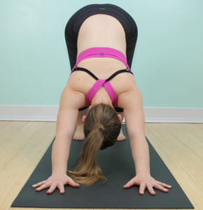 Downward Facing Dog requires the shoulders to be in flexion and external rotation.