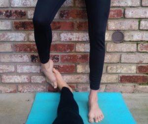 yoganoimcs 2.1