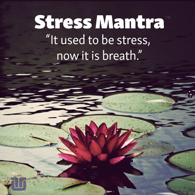 """QUOTE: stress mantra """"it used to be stress, now it is breath"""