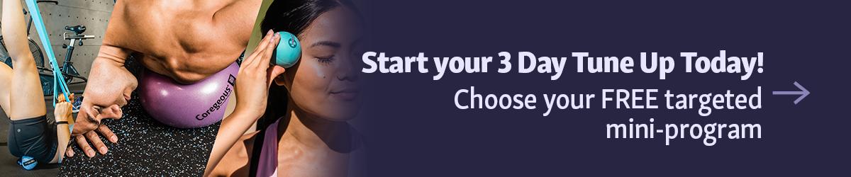 3-Day Tune Up Mini-Program Button